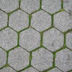 Paving-Stones
