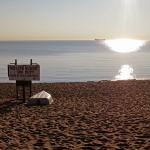 CaseyYork_Beach